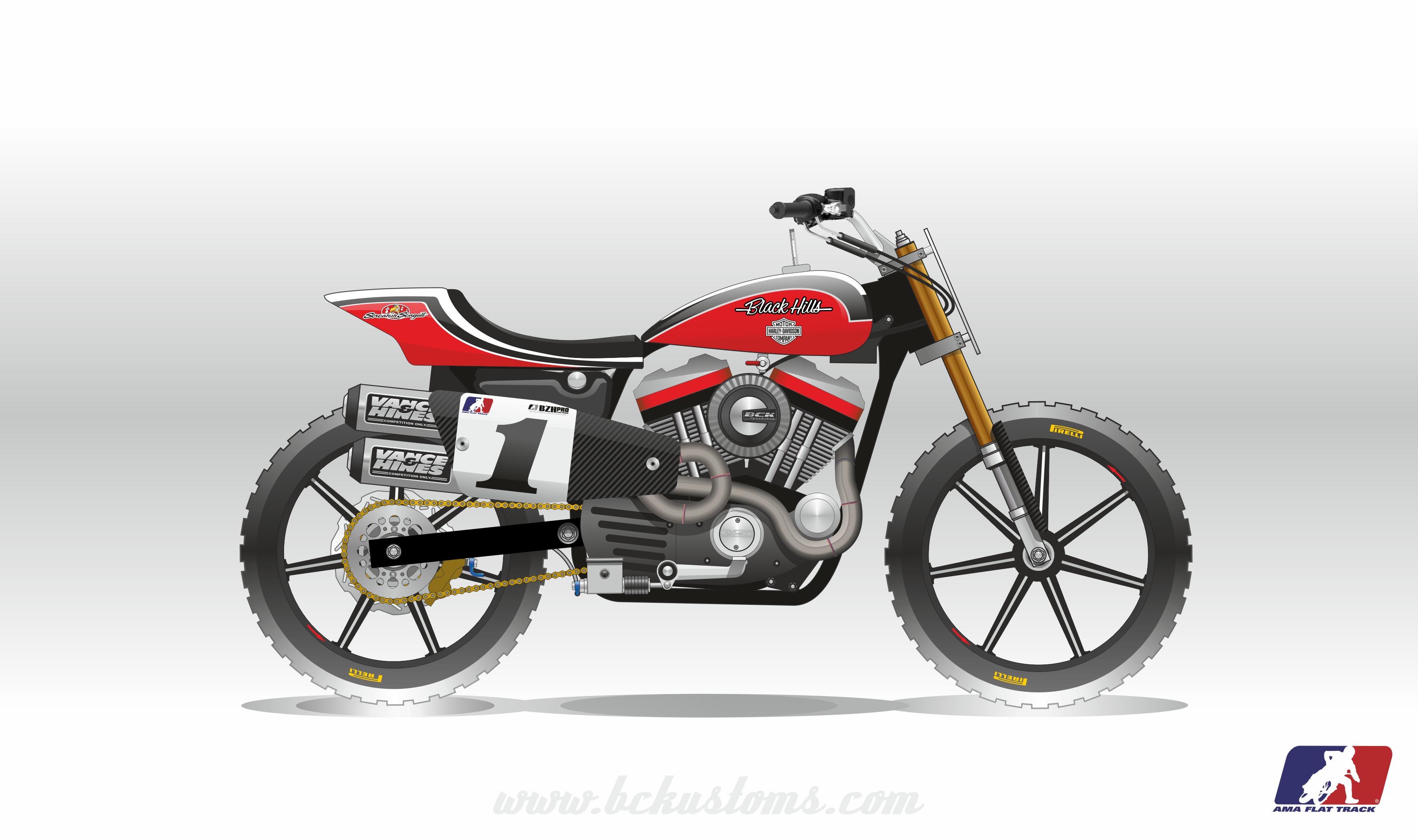 2015-bck-racing-flat-track-sportster-mees-01102016
